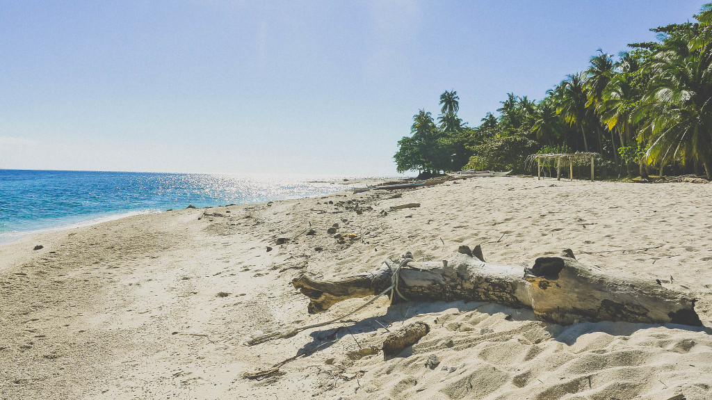 The sea-sickness and a 2-hour unstable-banca ride from Dipolog to Aliguay Island is worth the risk as the island greets you with its pristine and untouched white sand beaches.