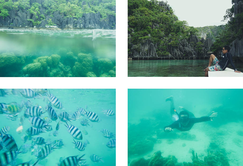 (Top-left) #theCorals #snorkeling #awesome (Top-right) Outside Barracuda Lake (Bottom-left) Oh, hello there, human. (Bottom-right) Snorkeling is fun in Coron