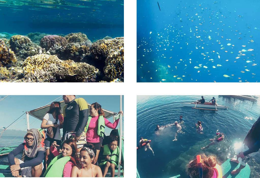 Corals. Fish. Us. Pescador Island.