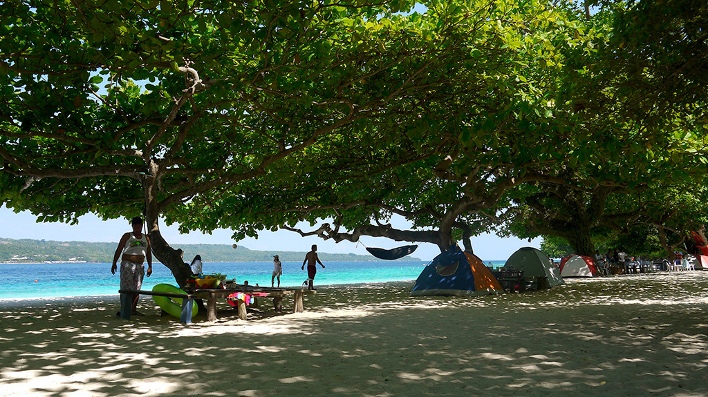 Talisay trees giving shades to beach bummers.