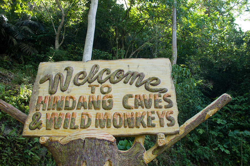 Welcome to Hindang Caves and Wild Monkeys