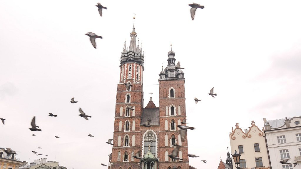 Saint Mary's Basilica and pigeons. Lots of them.