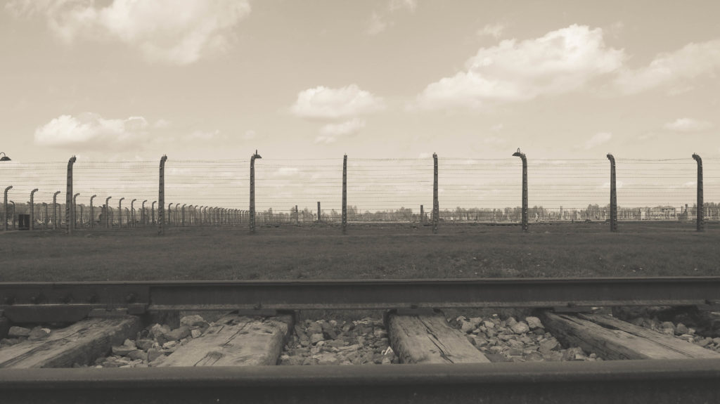 Birkenau. That's how massive the coverage area of the camp is.